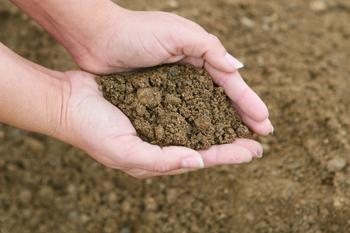 natural sand h hafner sons